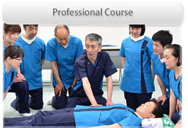 Professional Course